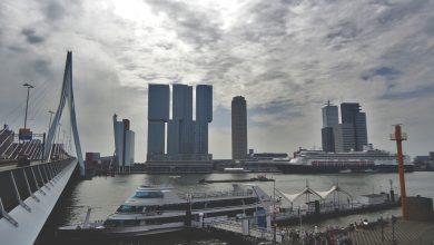 Róterdam, hoy. Arriba, el puente Erasmus construido en 1996. Foto: SuJu