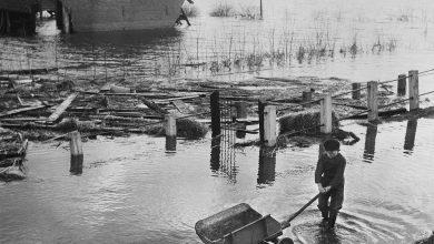Imagen de los días después de la tormenta de 1953 © Watersnoodmuseum Zeeland