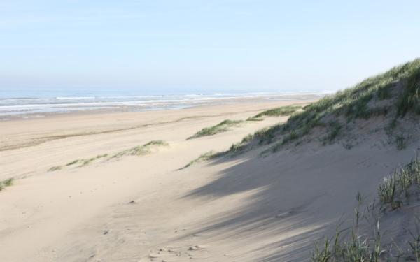 Las dunas en verano
